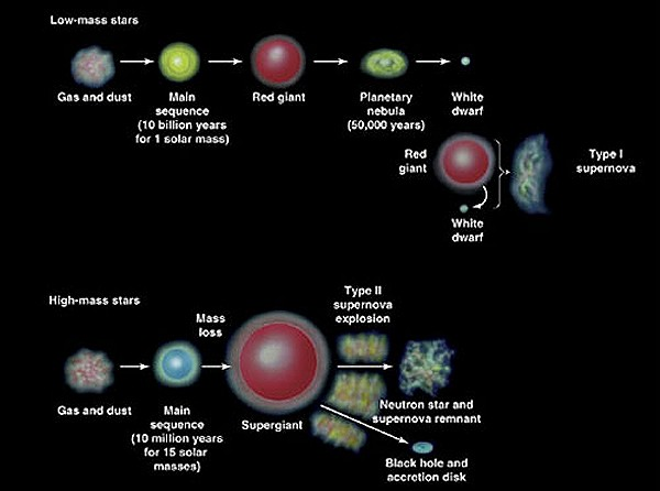 Evolution of high and low mass stars - click for larger version